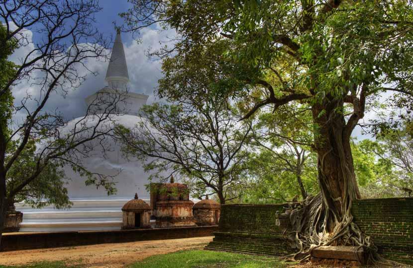 Buddhist Stupa, Anuradhapura