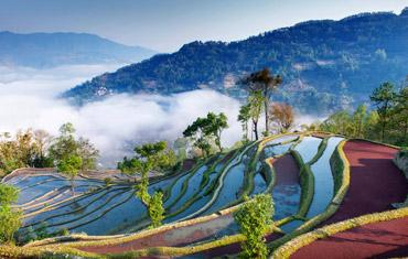 rice-terracdes-in-yuan-yang-china